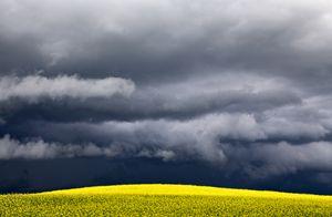 Storm Clouds Saskatchewan - Fine Art Photography