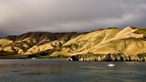 Ferry View Picton New Zealand - Fine Art Photography