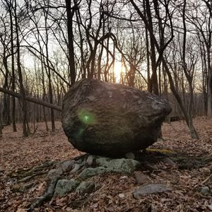 Winters nature orb