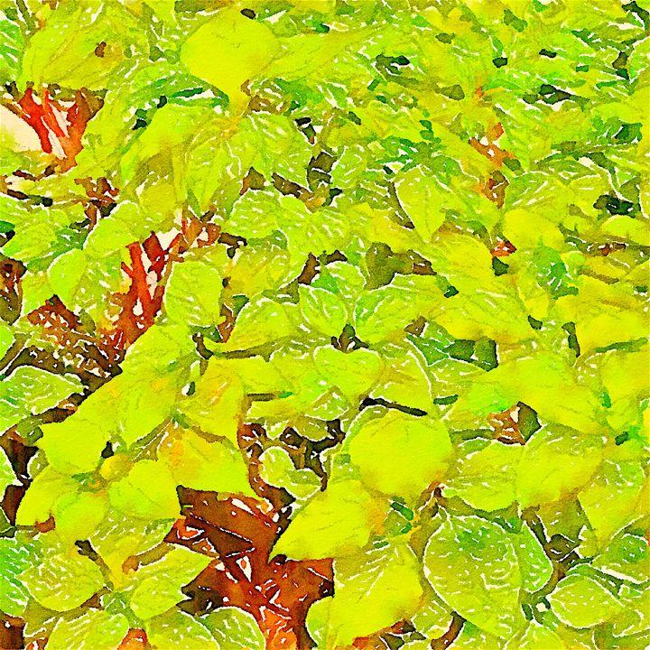 Repetitive plants - Botanical Art - Sensation Art