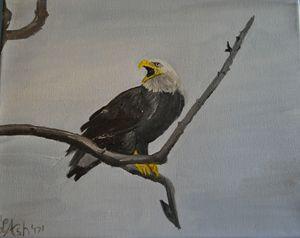 Talking bald eagle.
