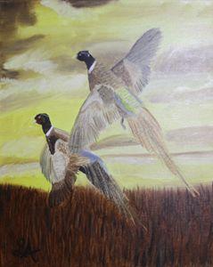 Pheasants in flight - Roses Artwork