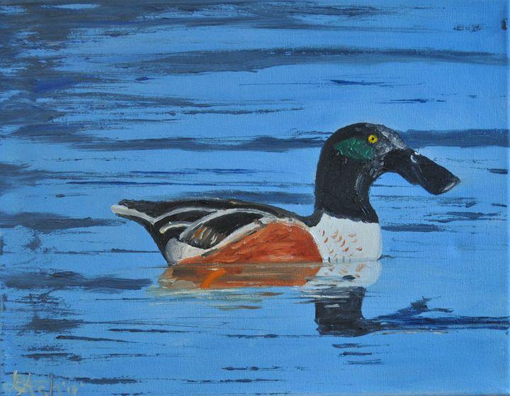 Northern Shoveler Duck - Roses Artwork