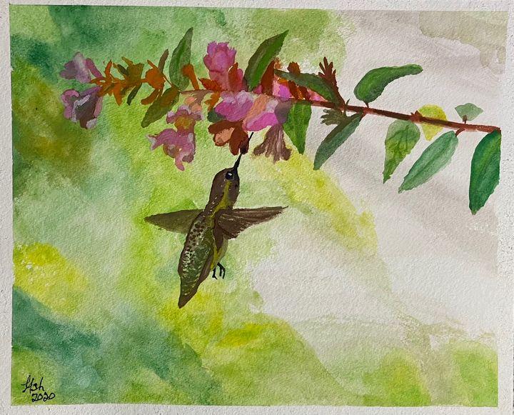 Hummingbird #2 - Roses Artwork