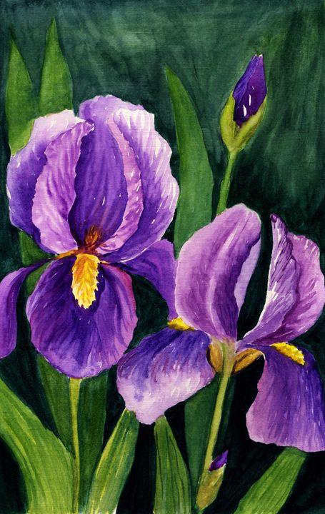 Irises - Yana Solare Art