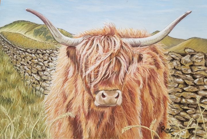 Hairy Drystone - Pastel Art by Rebecca