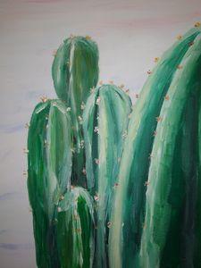 Cactus grouped