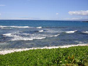 Ocean's Front