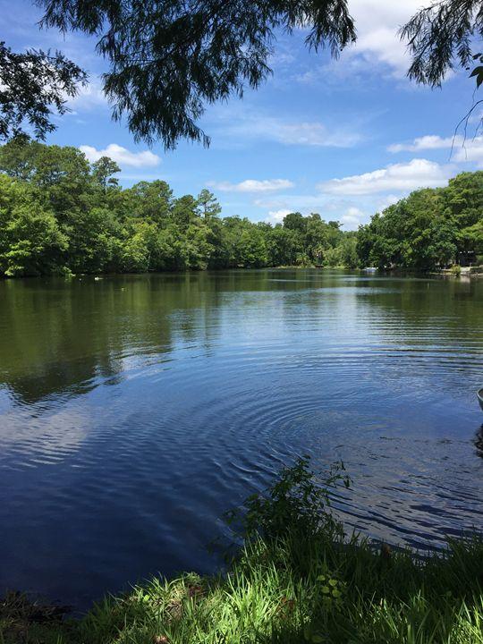 The Lake - Melissa's Art
