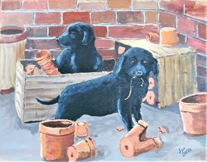 BLACK LAB PUPS - jimdeckersartwork