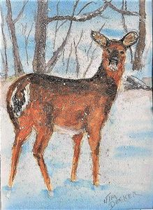 DEER IN THE SNOW - jimdeckersartwork