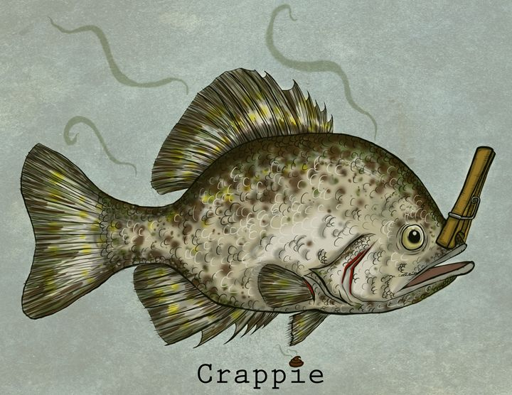 Crappie - Rob O'Connor