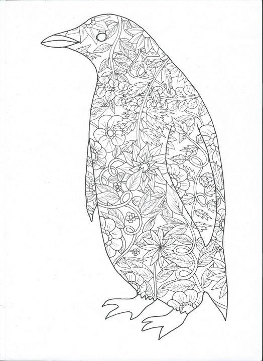penguin - dragan