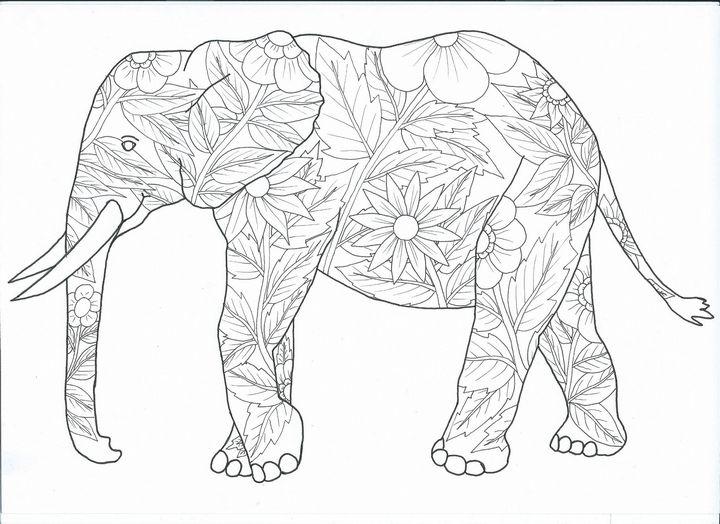 elephant - dragan