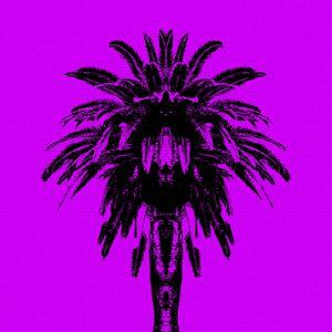 Palm Tree - Purple Sky