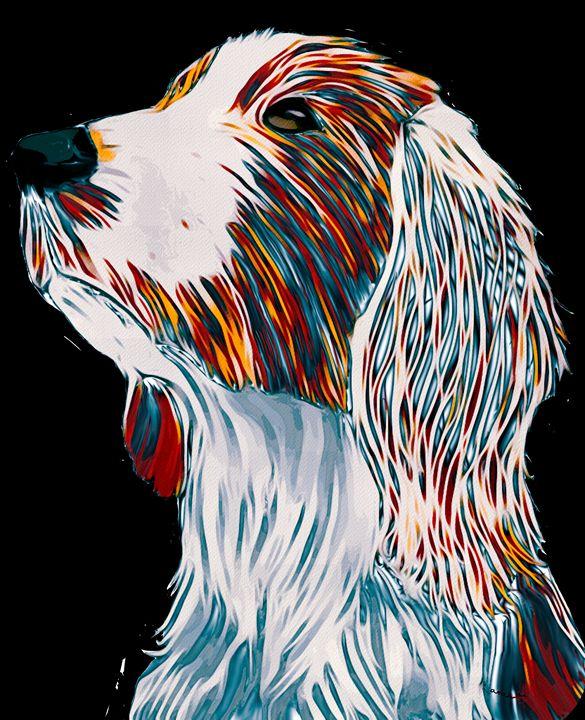 Welsh Springer Spaniel Art portrait - Karen Harding Artist