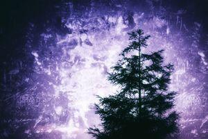 Mystic Wisdom - Leah McPhail