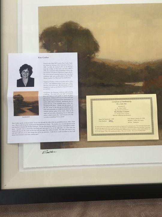 Certificate of authenticity - BAO Art
