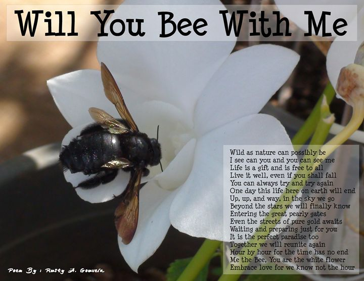 Will you bee with me - Rusty A. Gouveia