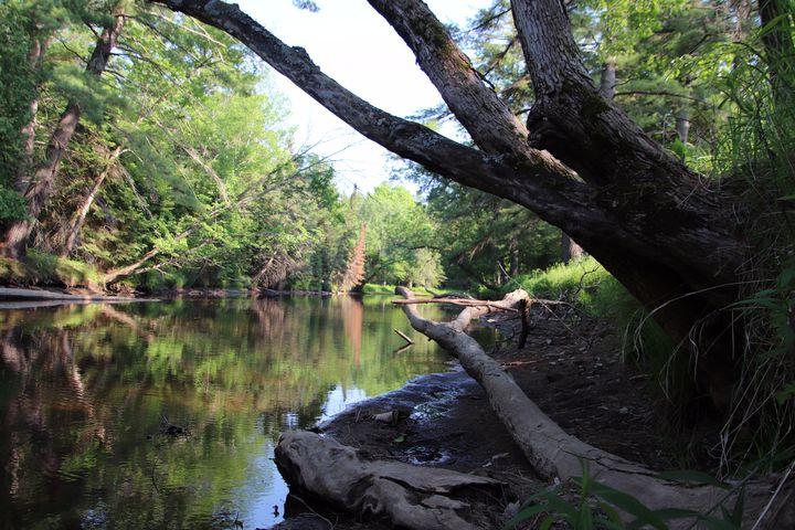 Reflection Eel Creek - MdAnjos Photography