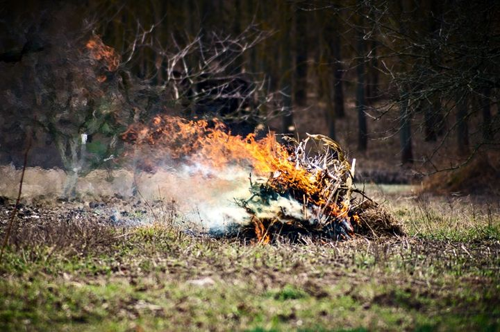 Fire which burned stick and leaves - The most