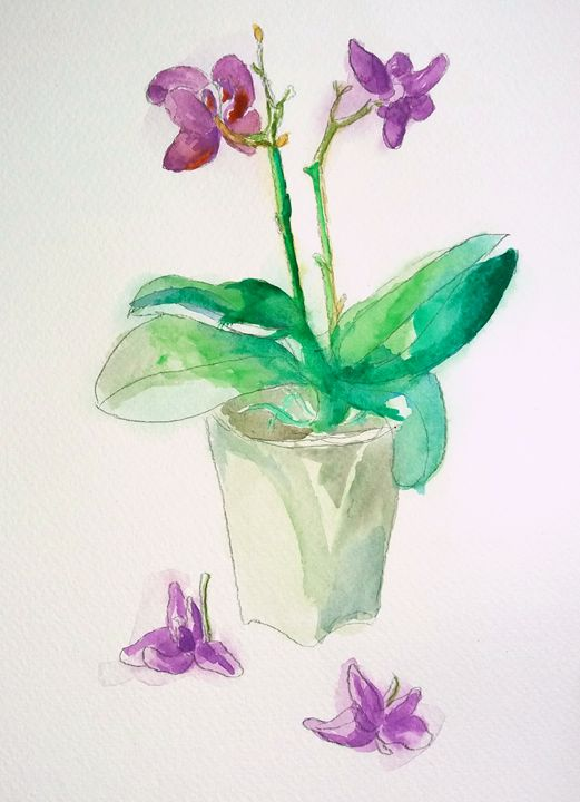 Little Purple Orchids - Cristina Vivi
