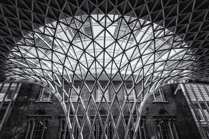 Kings Cross Station Ceiling - Milton Cogheil Photography