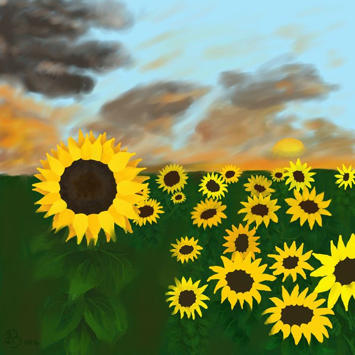 Sunflower sunset - House of Nika