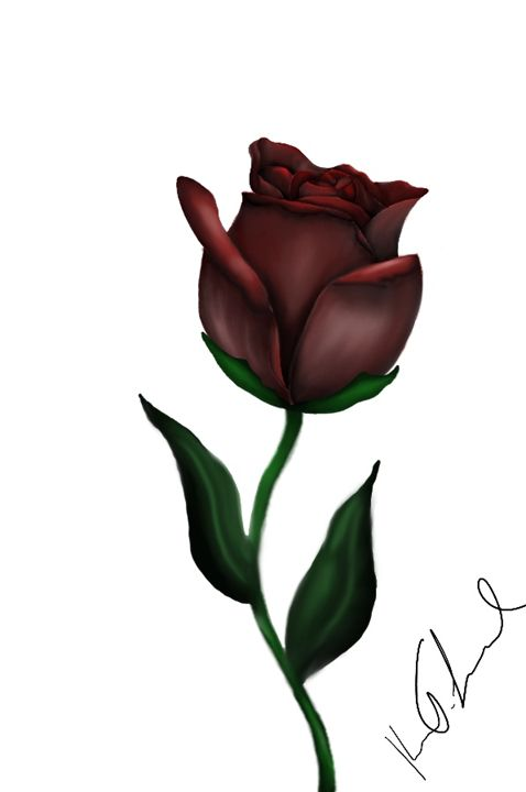 Rose - Digital art by Kel