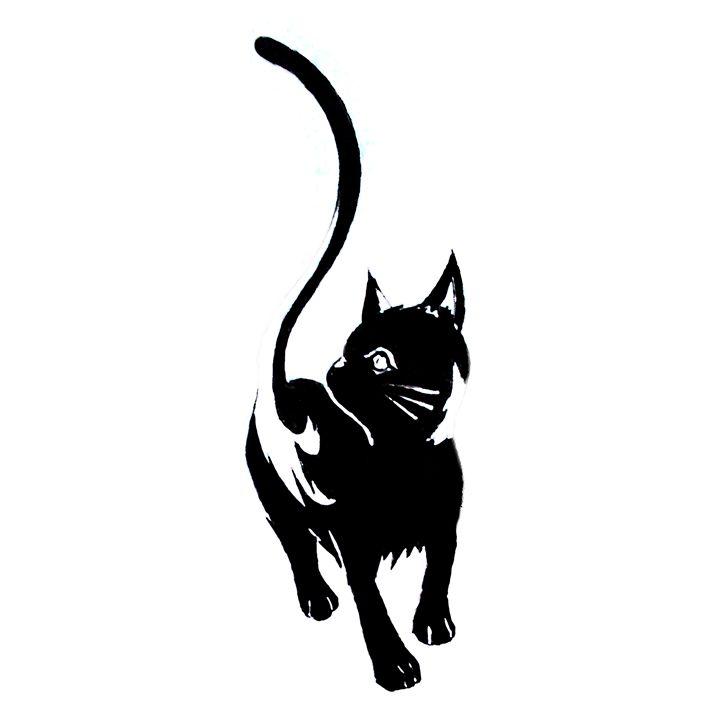 Black cat - Rogueblue