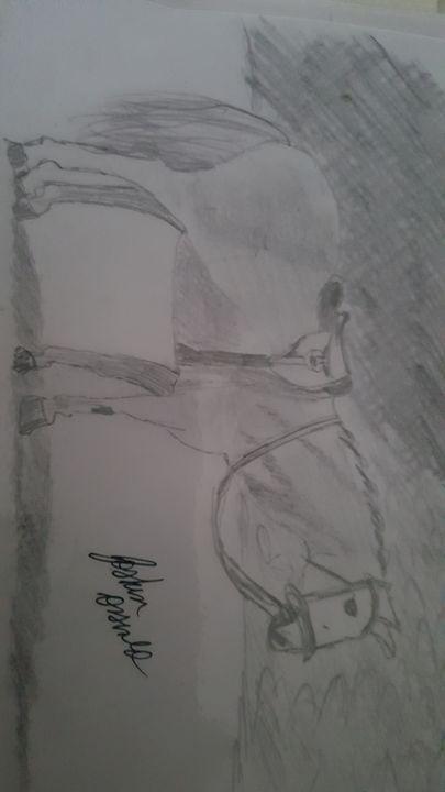 Horse - Joshua Osswald