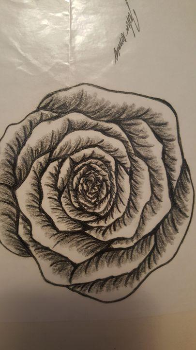 Rose - Joshua Osswald