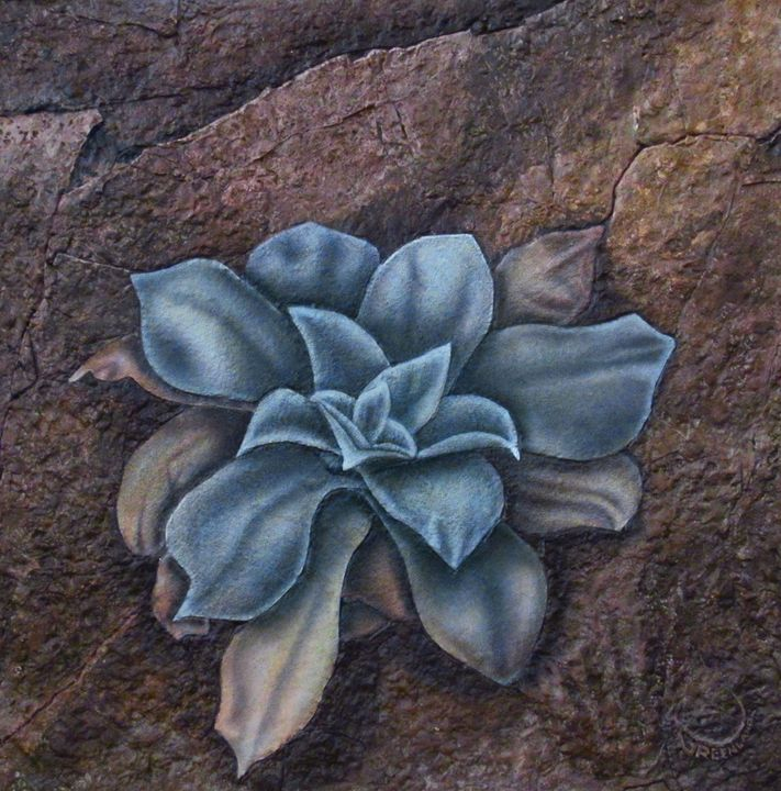 LONELY DESERT FLOWER - Greenland Art