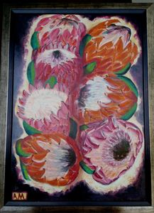 Popular Proteas