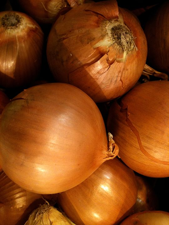 Onions - Katia Lima
