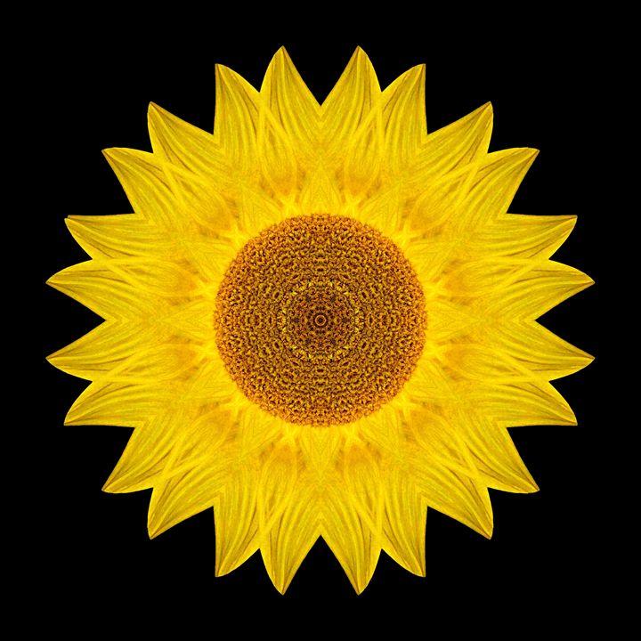 Yellow Sunflower IX - Flower Mandalas