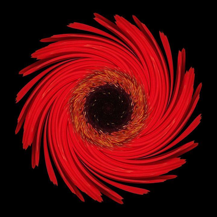 Dying Amaryllis VII - Flower Mandalas