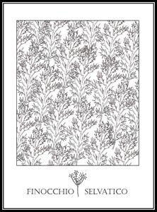 Finocchio Selvatico - Wild Fennel