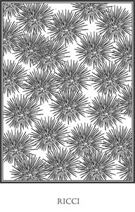 Ricci - Sea Urchins
