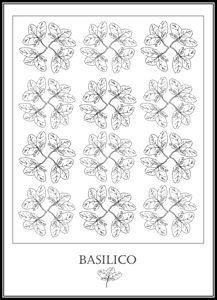 Basilico - Basil
