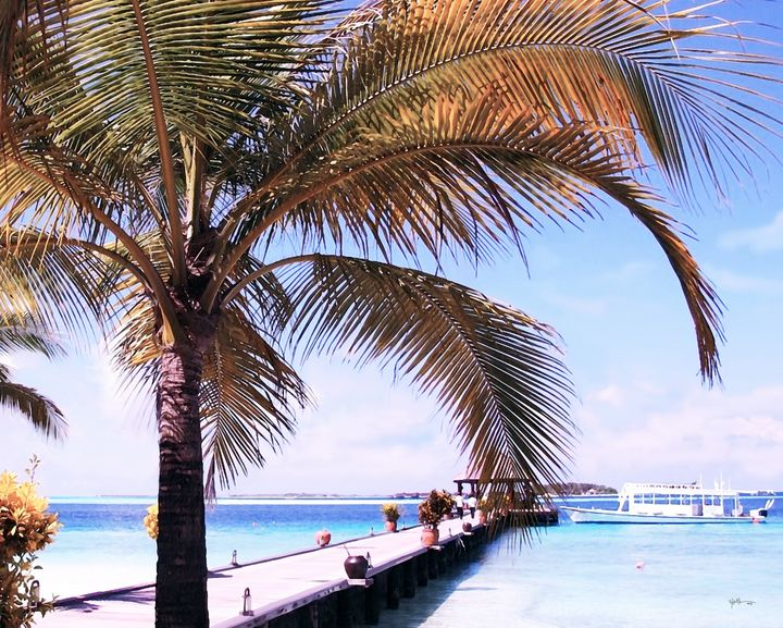 Endless Summer In Maldives - Angelo