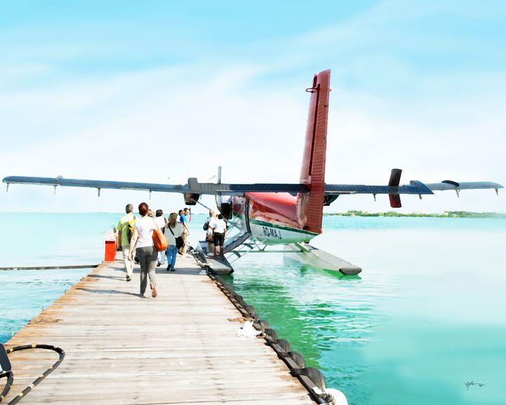 Domestic Air Transfer Of Maldives - Angelo