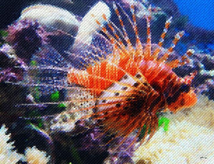 Tropical-fish - Angelo