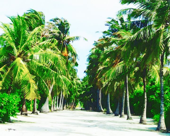Maldives,white sandy pathway - Angelo