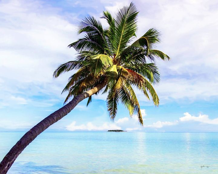Wonderful Day In Maldives - Angelo