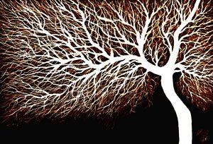 Tree No. 11