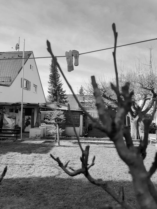 Sunwashed on a snowy day - Neils cottage
