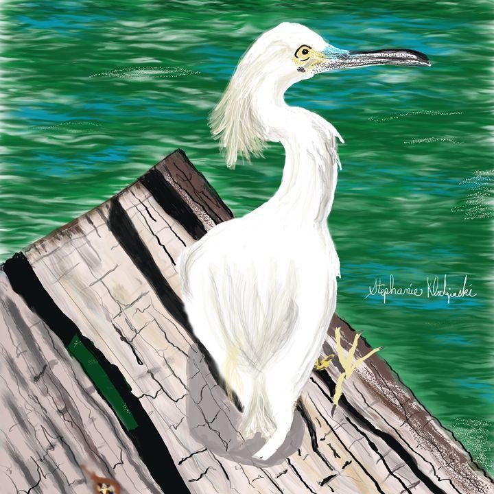 Egret - Stephie K