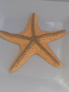 Starfish sculpture
