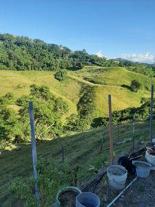 Untouched hills